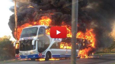 Video / Impresionante incendió de un colectivo de El Rápido en La Plata