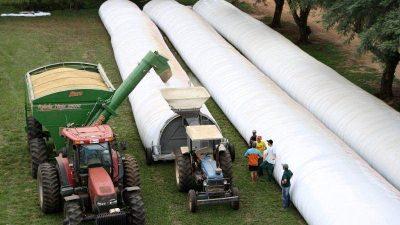 """Eduardo Buzzi advirtió que los productores retendrán granos """"por defensa propia"""""""