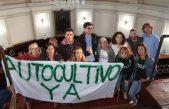 La Plata adhirió a la ley que regula la investigación del uso medicinal del Cannabis, las ONG ahora piden la despenalización del autocultivo