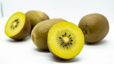 Argentina exporta a Europa kiwi amarillo orgánico producido en Mar del Plata