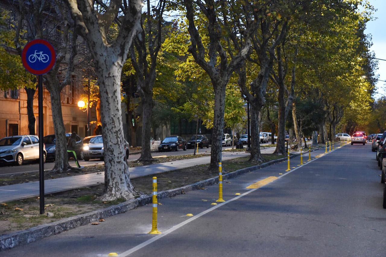 Bisicendas de avenida 53