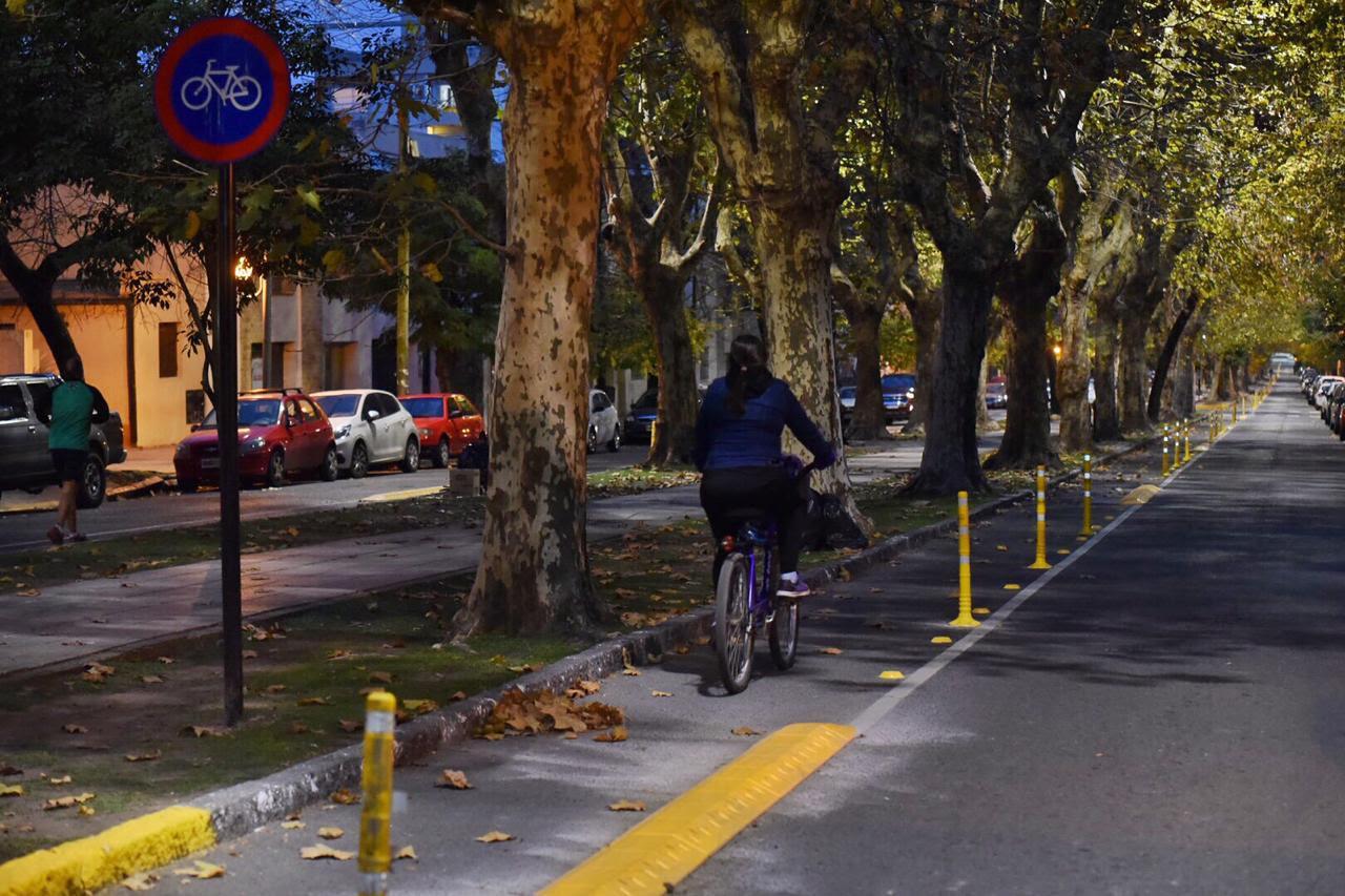 La Plata al estilo porteño continúa en la delimitación de la bisicenda en la avenida 53