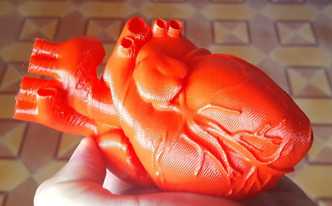 Impresión 3D: En un aula de robótica del interior de la provincia imprimieron un corazón