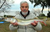 Laguna Sauce Grande: pescó un pejerrey de 1.125 kilos y ganó 100 mil pesos