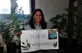 En fallo sin precedentes, la justicia de La Plata ordena devolver plantas de cannabis a una cultivadora