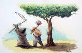 Foro en Defensa del Árbol