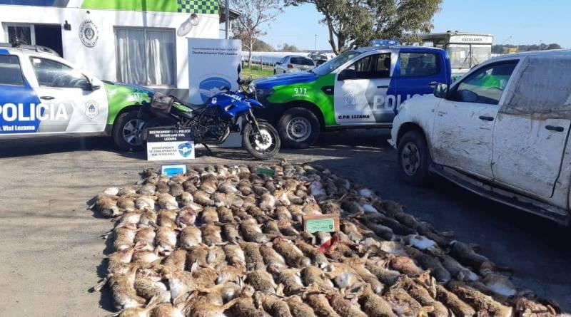 Caza furtiva: detuvieron una camioneta en Ruta 2 y se encontraron con 177 liebres muertas en la caja
