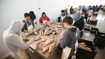La Costa / La Terminal Pesquera Municipal hará su primera exportación a Francia