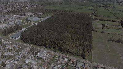 Lomas de Zamora / Vecinos de Lavallol lograron la defensa del pulmón verde y la justicia frenó la venta