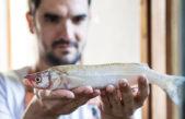 ¿Quién es el cocinero que se suma a trabajar voluntariamente en Argentina contra el Hambre?