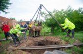 En Campana lograron rescatar a un caballo que se había caído a un pozo