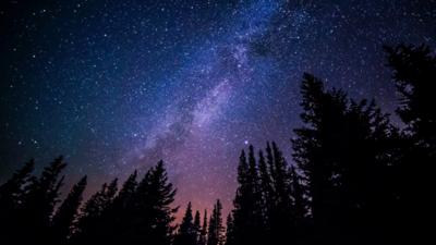 Algunos datos curiosos de Bajo la misma estrella