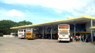 """En la """"Semana del bus"""" ofrecen pasajes de larga distancia con grandes descuentos para las vacaciones"""