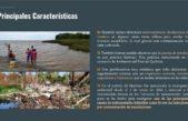 Preocupación ambiental:En Quilmes existen actualmente más de 300 basurales a cielo abierto