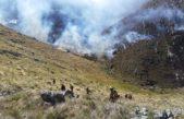 Los bomberos lograron controlar el incendio en el cordón serrano de Saavedra