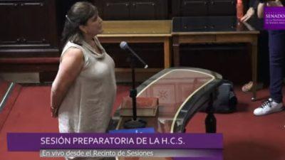 Teresa García, Celillo y Vivona, las nuevas autoridades del senado bonaerense