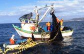 Provincia apuesta a impulsar la producción pesquera de Mar del Plata