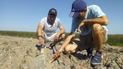 Descubren en San Pedro restos de una playa marina de 5 mil años de antigüedad que cubría gran parte del norte bonaerense