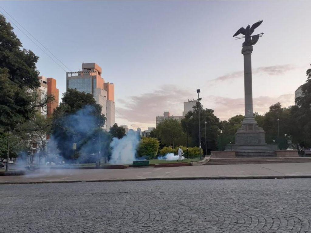 """La Plata tiene dos casos de dengue autóctono y se investiga posible """"circulación viral"""""""