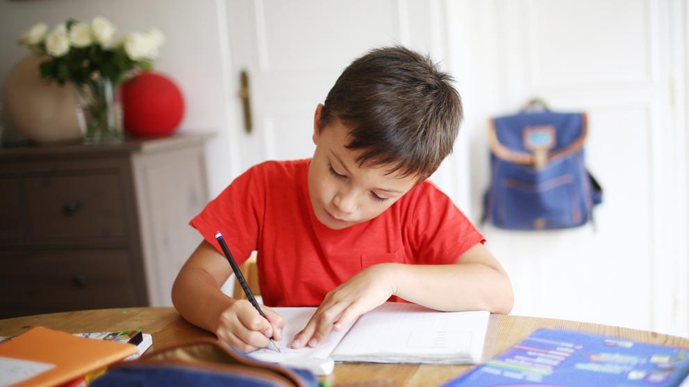 Sin clases: Desde el miércoles estarán los cuadernillos con tareas para el hogar