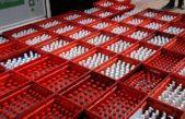 La Plata: decía que no tenía alcohol en gel pero le encontraron 2 mil botellas escondidas