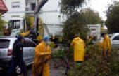 El OCEBA supervisó la regularización del servicio eléctrico de más de 35.000 usuarios tras las fuertes tormentas en La Plata