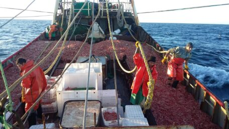 """Desde el SOMU explican los motivos del paro de pesqueros: """"Quieren flexibilizar nuestro Convenio Colectivo"""""""
