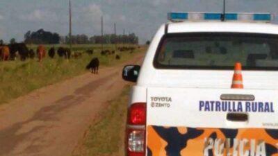 """En 2021, la Provincia lanzará la carrera de """"Policía Rural"""""""
