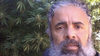 Junín: le robaron las plantas de marihuana, hizo la denuncia y dos meses después logró que se las devolvieran