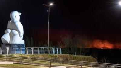 """""""Los focos de incendio son cada vez más"""", advirtió Passaglia sobre el desastre ecológico en Delta del Paraná"""