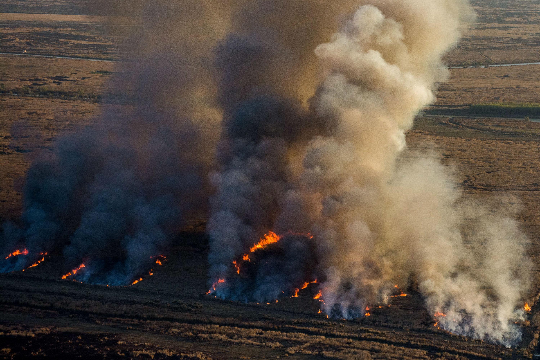 ¡Muy raro! Greenpeace denuncia que la Sociedad Rural Argentina presiona para que no haya castigos a quienes prenden fuego los campos