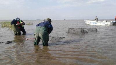 Una denuncia por corrupción con la pesca de pejerrey desató un escándalo en Trenque Lauquen: Fernández recurrió a la justicia