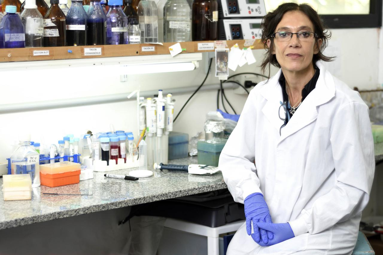 Una especialista de la UNLP explicó cuántas vacunas se necesitan para olvidarnos de la pandemia