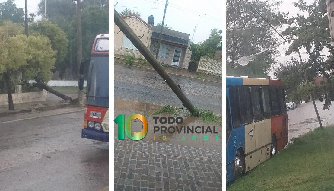Fuerte tormenta con caída de árboles y postes de luz en Guaminí