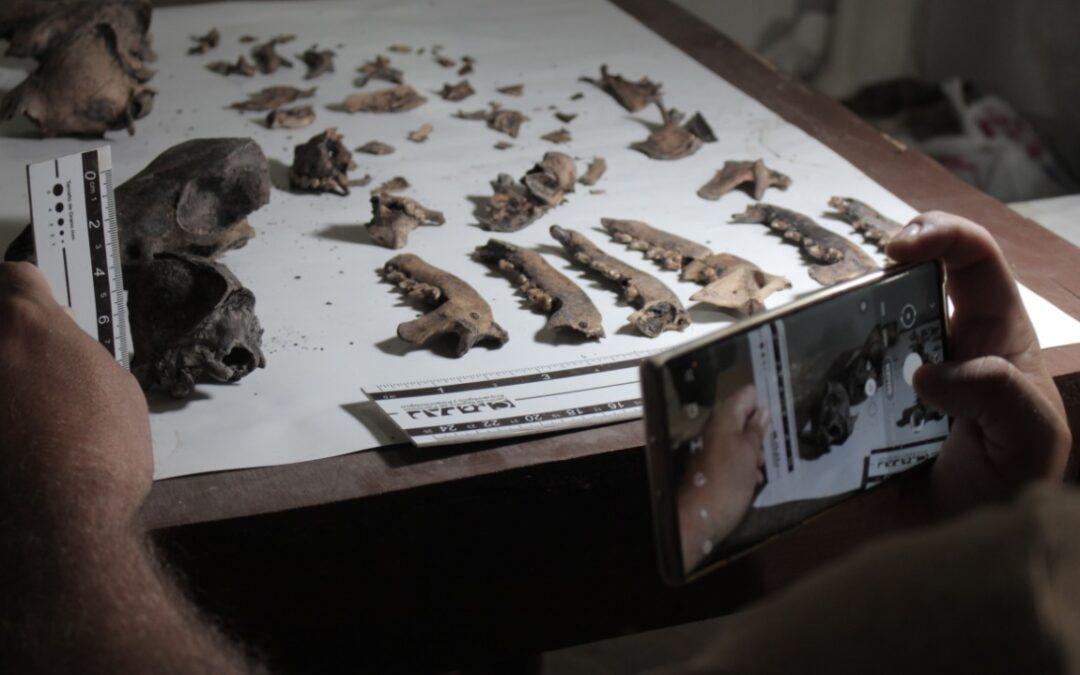 Camet Norte: La cuna de la biología molecular y la genética aplicada a la paleontología