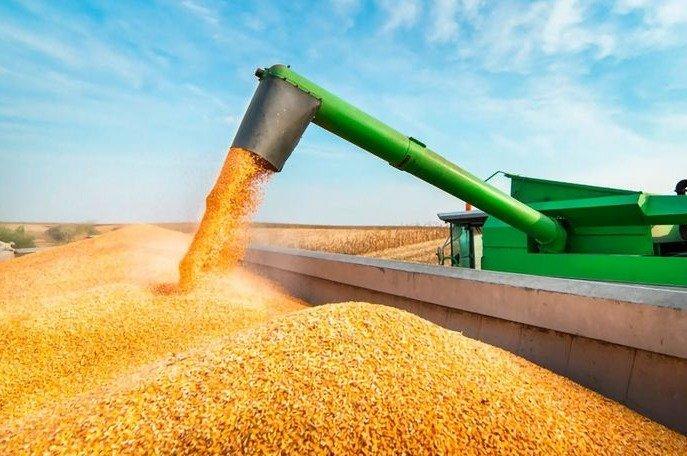 Para intentar destrabar el conflicto con las patronales agropecuarias, se reabren las exportaciones de maíz