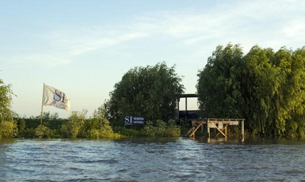 En San Isidro apareció una nueva isla y Posse asegura que el municipio tendrá su propio delta