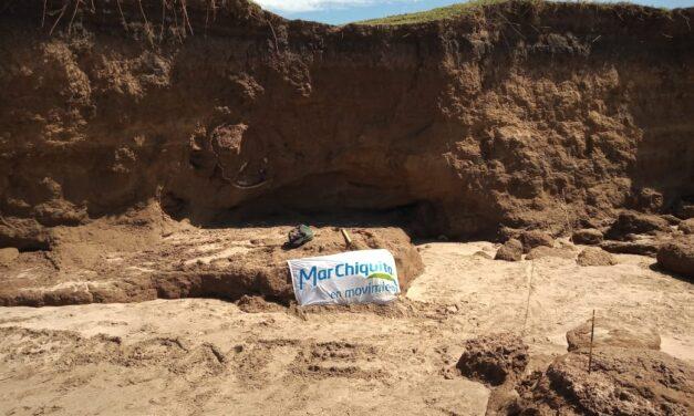 Veraneantes descubren un caparazón de Gliptodonte de la última Era de Hielo en la costa bonaerense