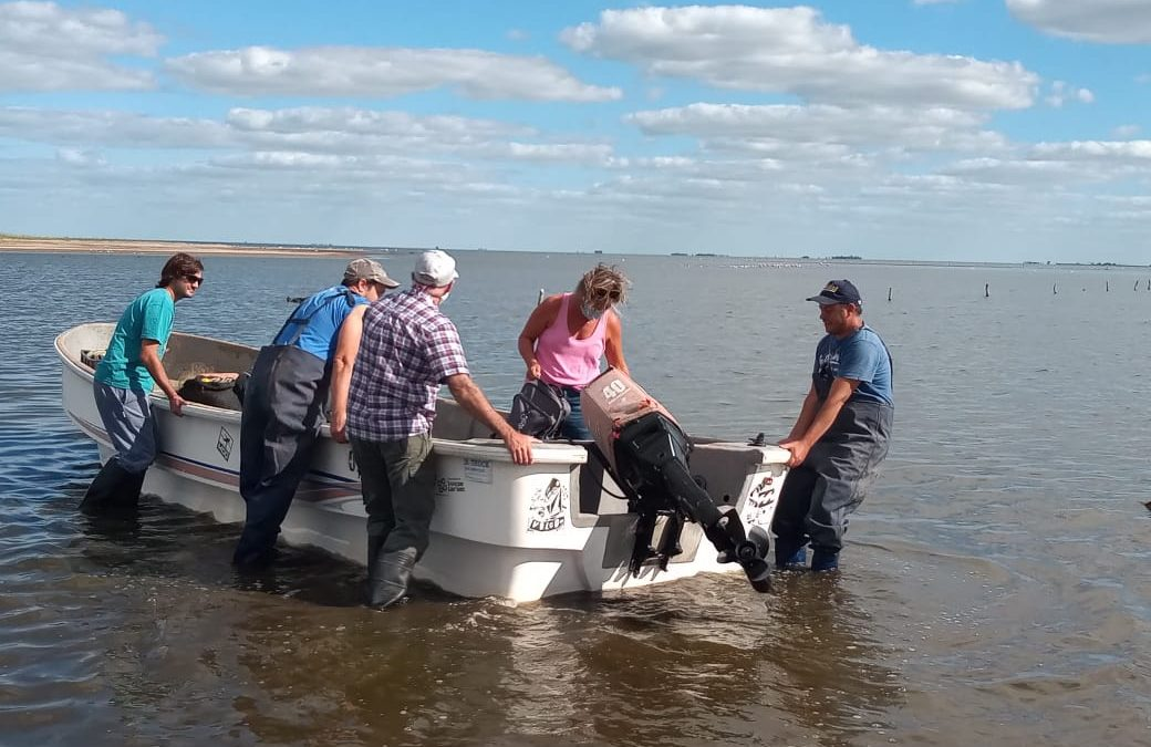 Biólogos estudiaban la población de pejerrey en la laguna Las Tunas y les robaron las redes