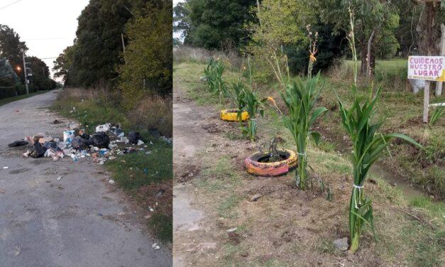 La Plata: Vecinos de La Hermosura desactivaron un basural a cielo abierto y crearon un jardín de flores