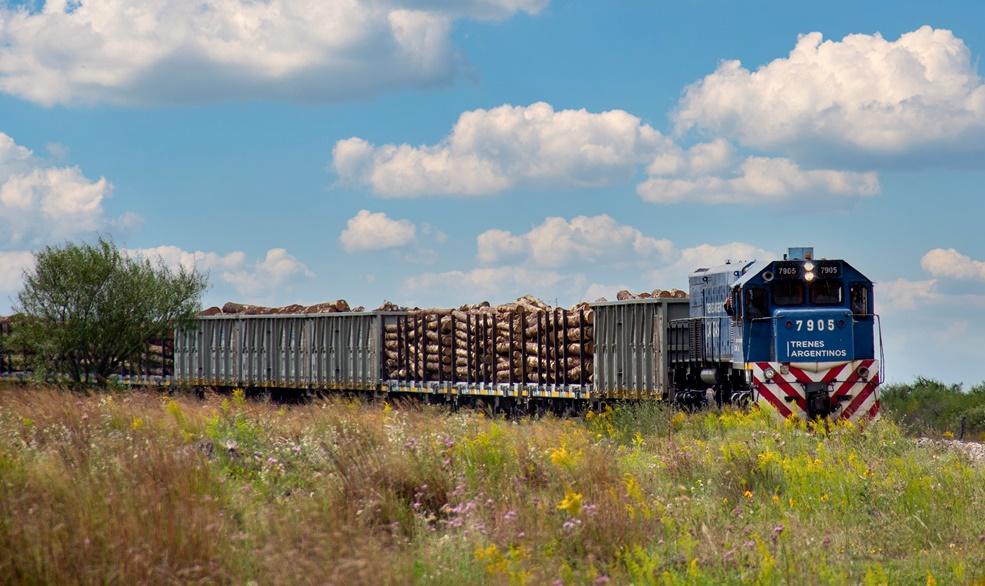 Trenes Argentinos transportó un 50% más de cargas que durante la gestión Dietrich