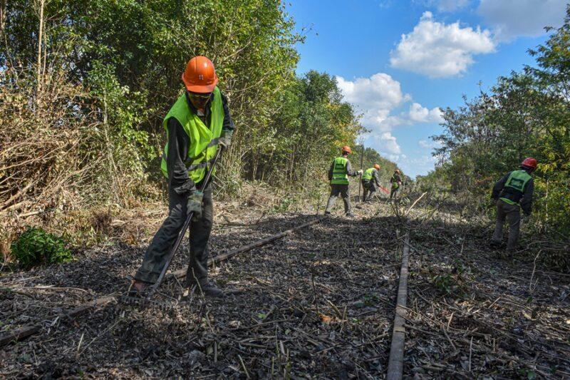 limpian vías para evaluar la vuelta del tren a San Antonio de Areco
