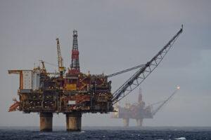 La actividad petrolera afectarían al icónico ecosistema marplatense y a sus habitantes.