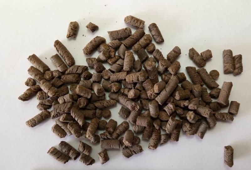 Compost en cultivos extensivos: el INTA probó un biofertilizante que aumentó un 19% el rendimiento del trigo