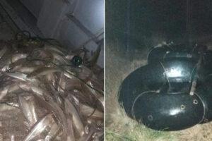 """Pesca clandestina en el espejo lacunario llamado """"Bajo de Milanesio""""."""