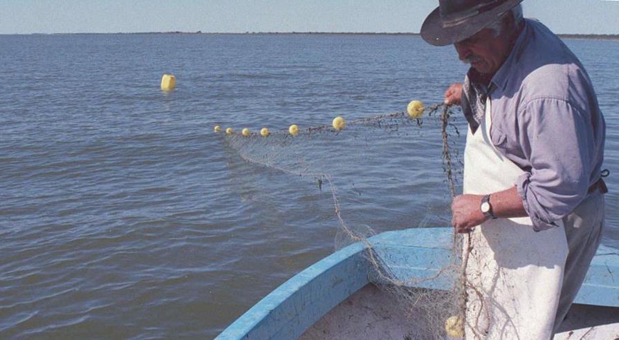 Trenque Luquen tiene la única laguna habilitada para la pesca comercial y comenzará a vender pejerrey a otros municipios