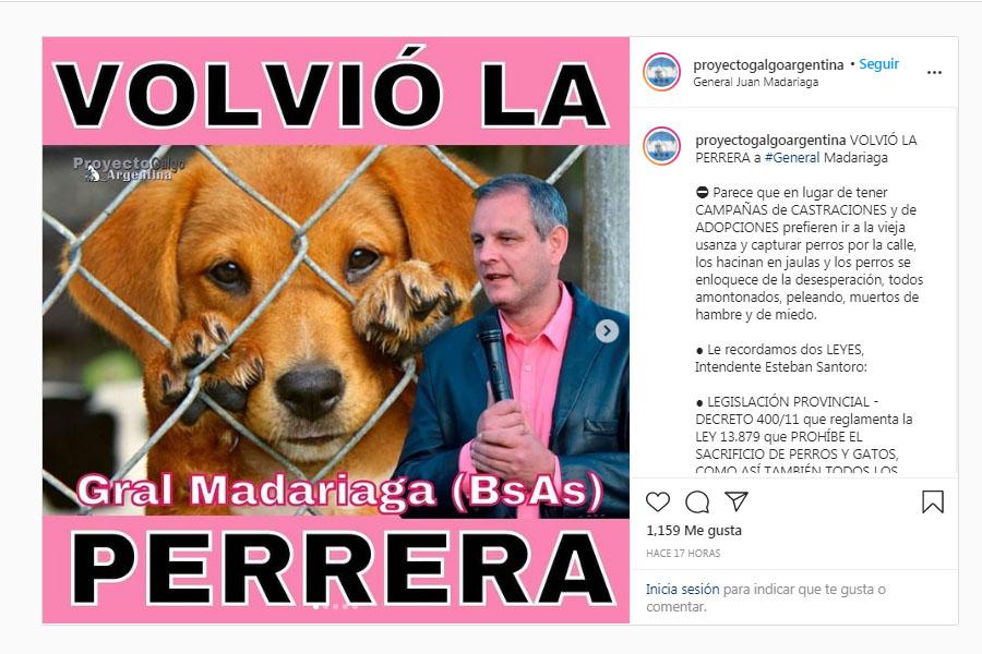 La denuncia pública de Proyecto Galgo Argentina