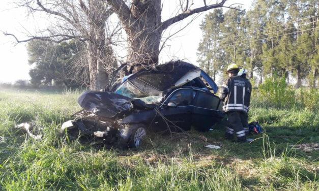 Tragedia en Monte: un matrimonio y una nena de 9 años murieron luego de chocar contra una oveja suelta sobre Ruta 41